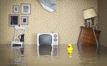 Emergency Plumbing Tips for Homeowners